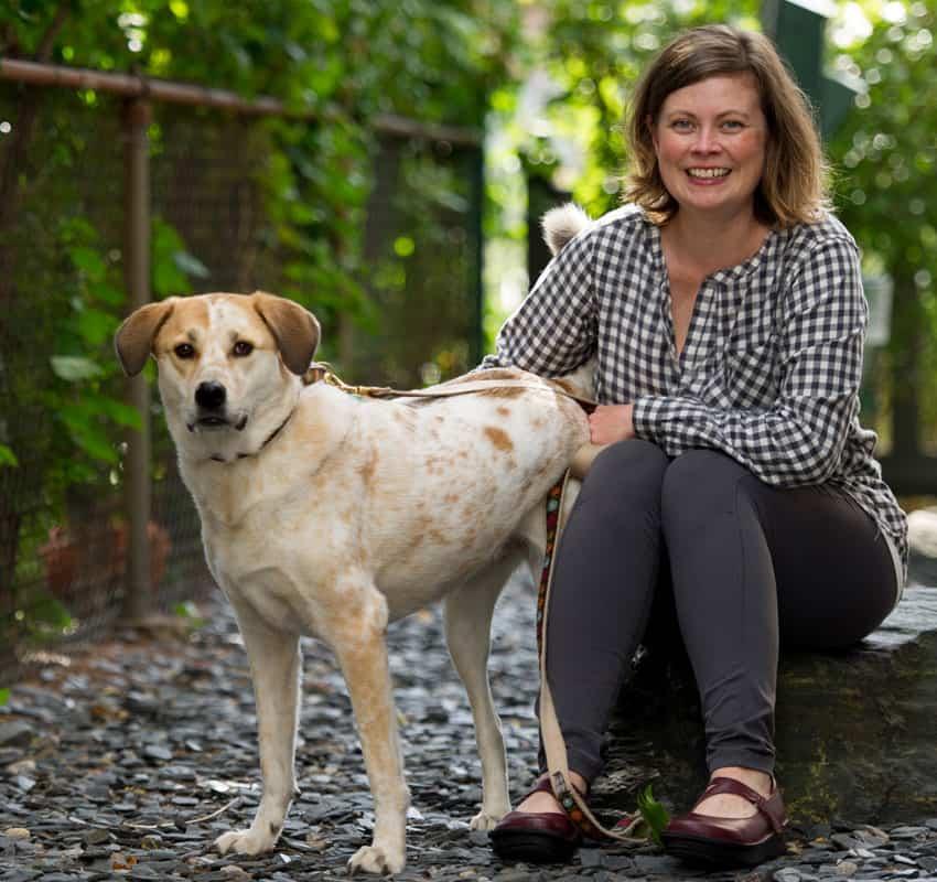animal-dermatology-dog-cat-allergies-animal-medical-center-of-chicago